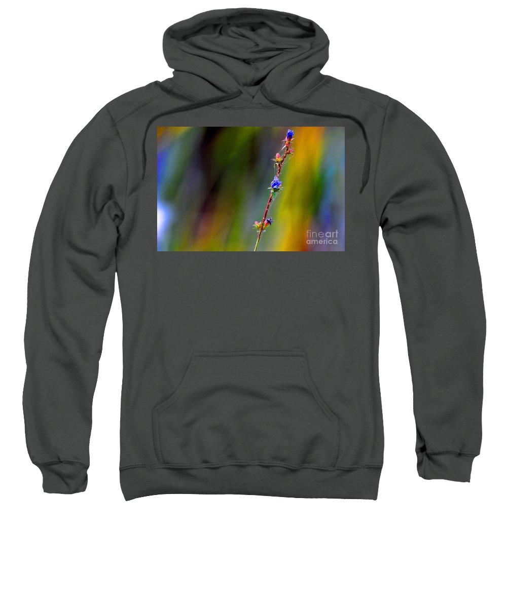Singularity Sweatshirt featuring the photograph Singularity by Andrea Kollo