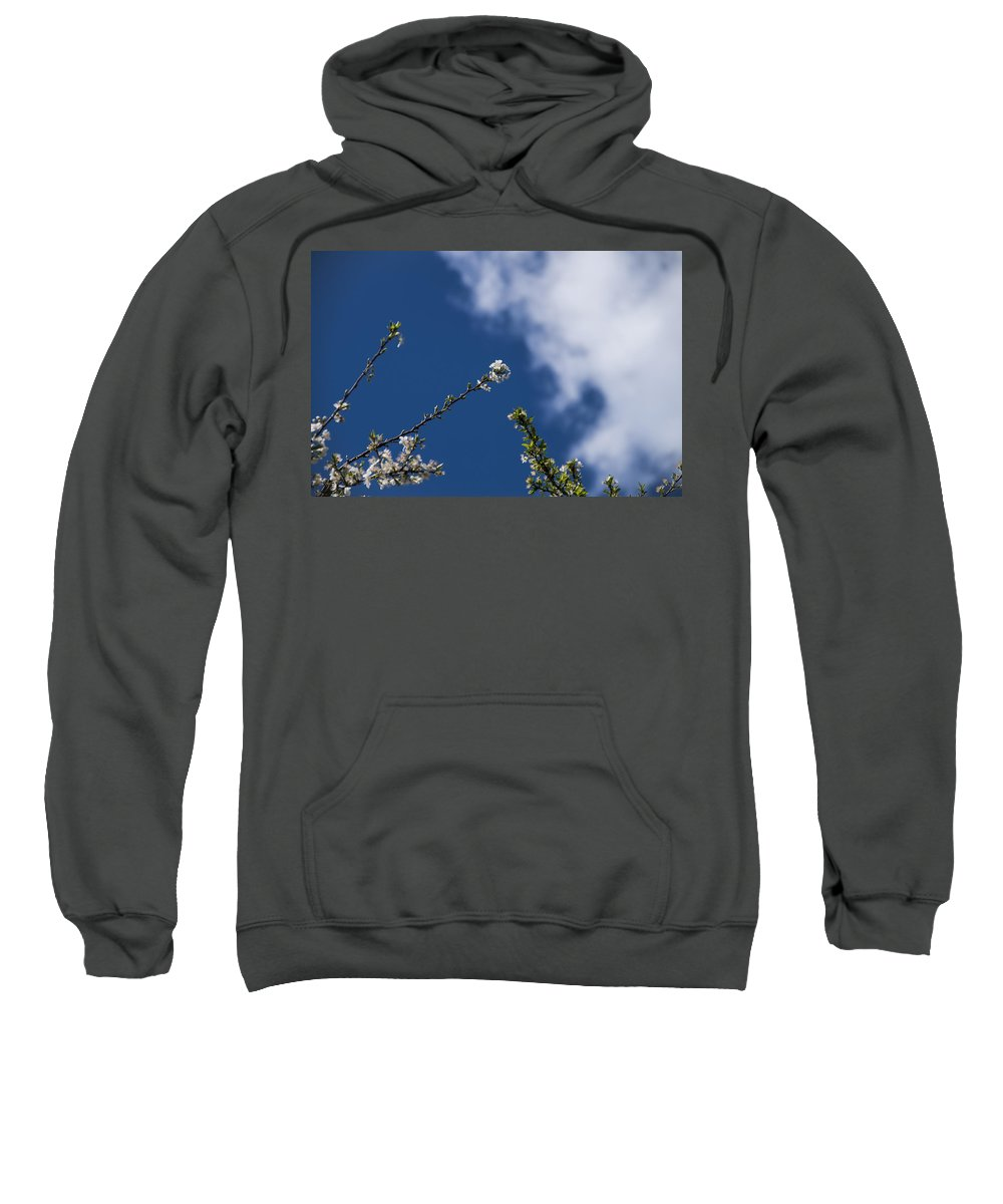 Nature Sweatshirt featuring the photograph White Flowers by Paulo Goncalves