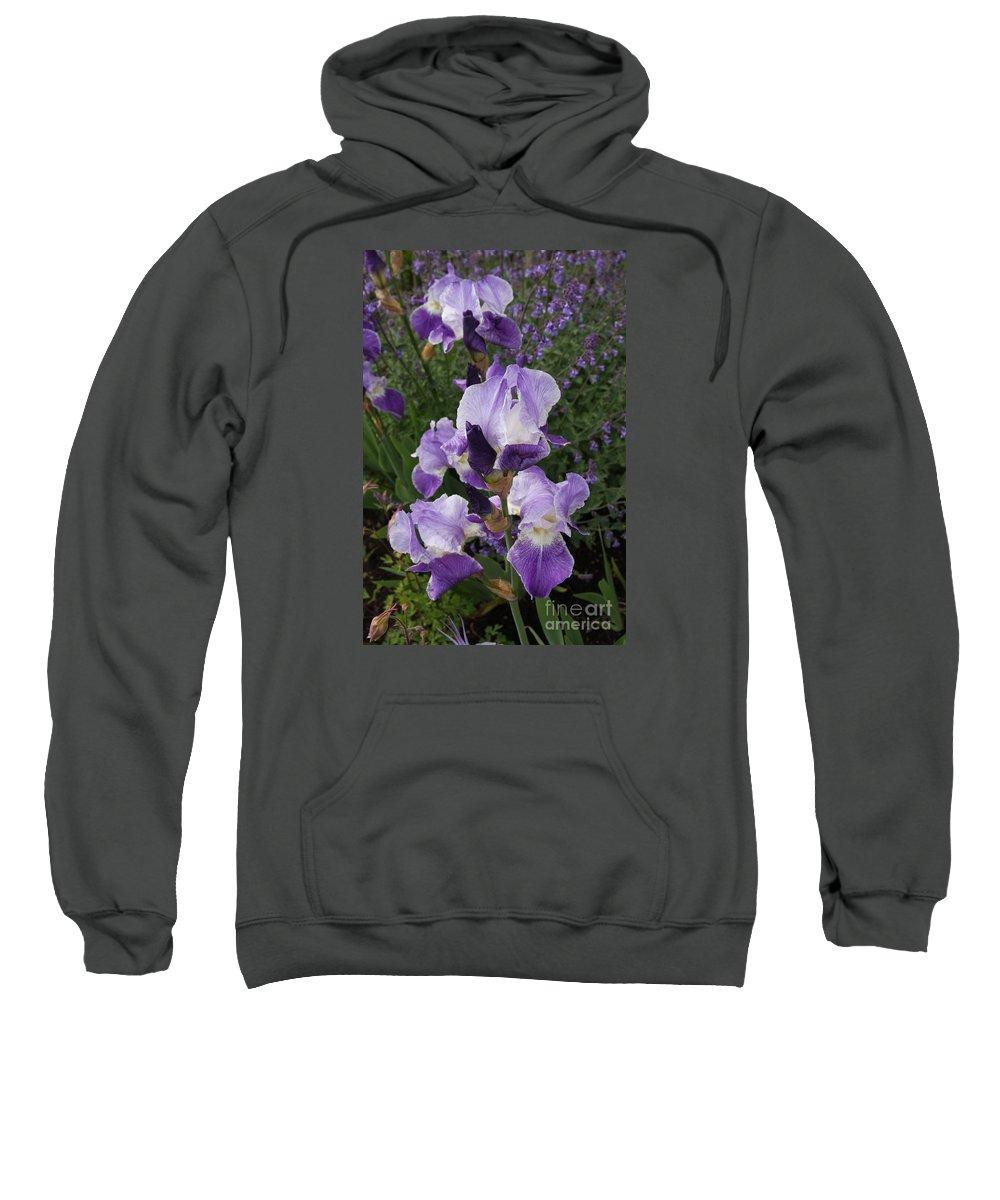 Iris Sweatshirt featuring the photograph Blue Iris by Christiane Schulze Art And Photography