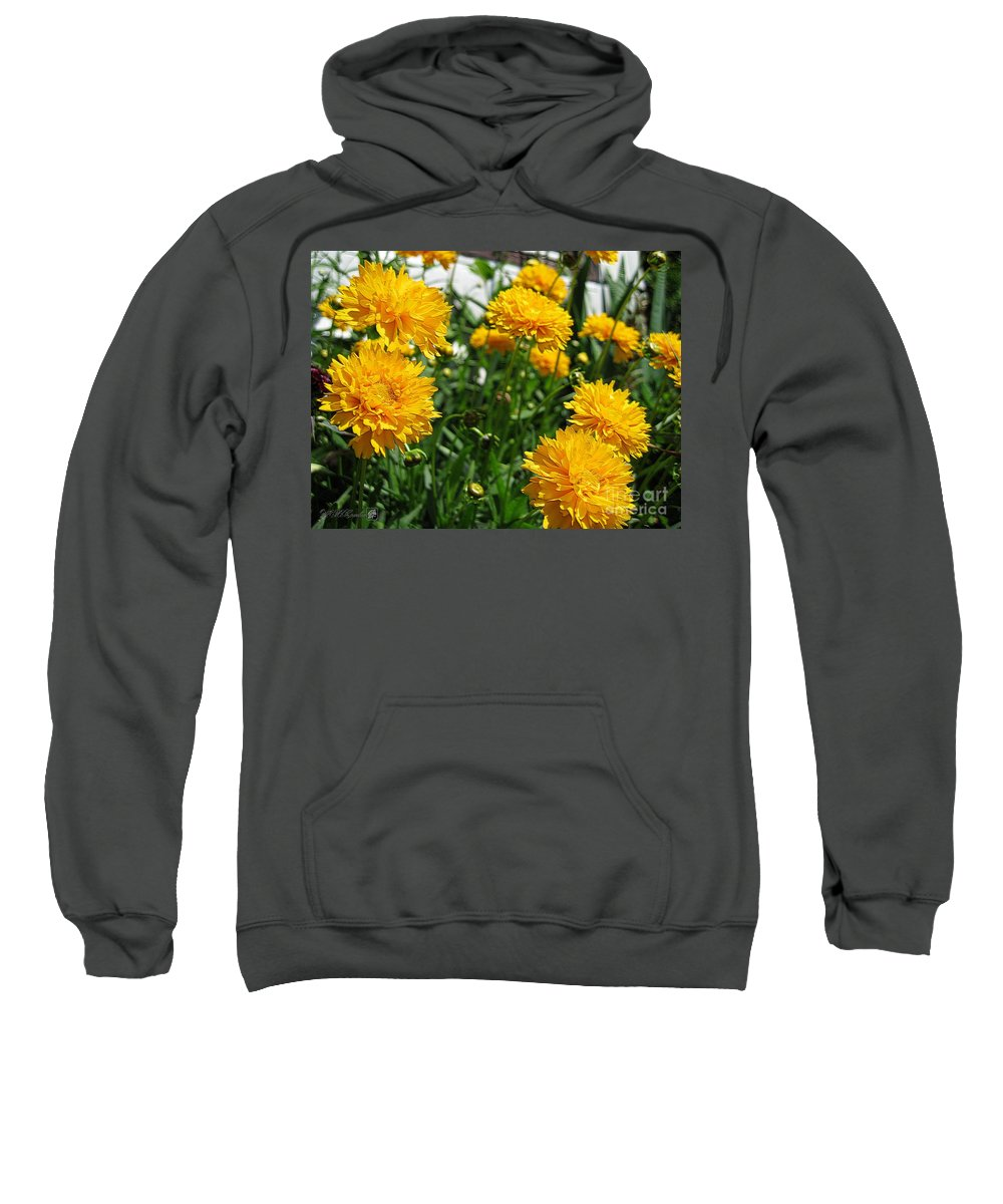 Coreopsis Sweatshirt featuring the digital art Coreopsis Named Early Sunrise by J McCombie
