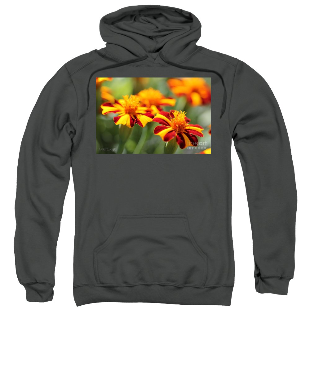 Mccombie Sweatshirt featuring the photograph Novelty French Marigold Named Mr. Majestic by J McCombie