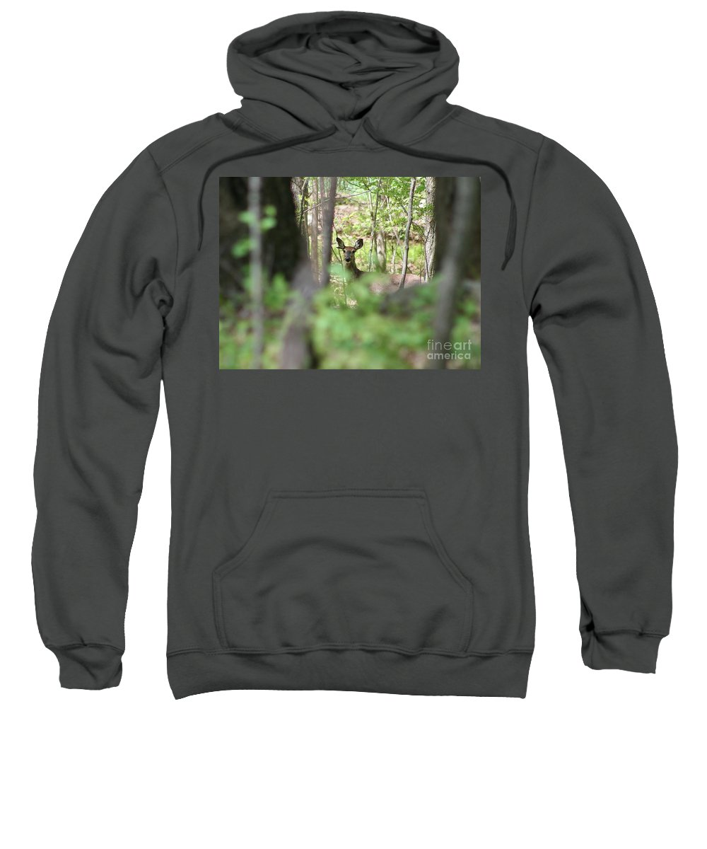 Deer Sweatshirt featuring the photograph Through The Trees by Neal Eslinger