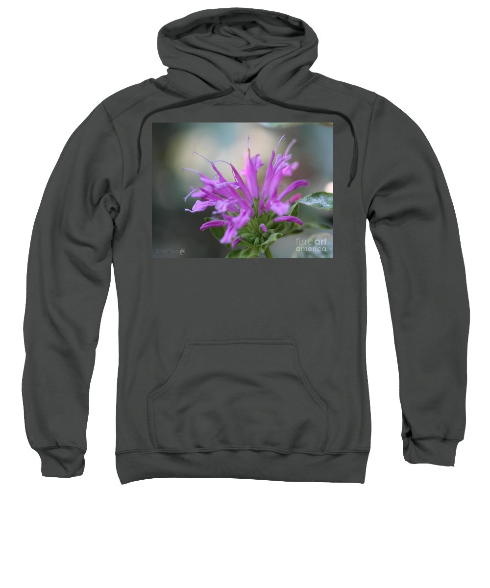 Bee Balm Sweatshirt featuring the photograph Bee Balm From The Panorama Mix by J McCombie
