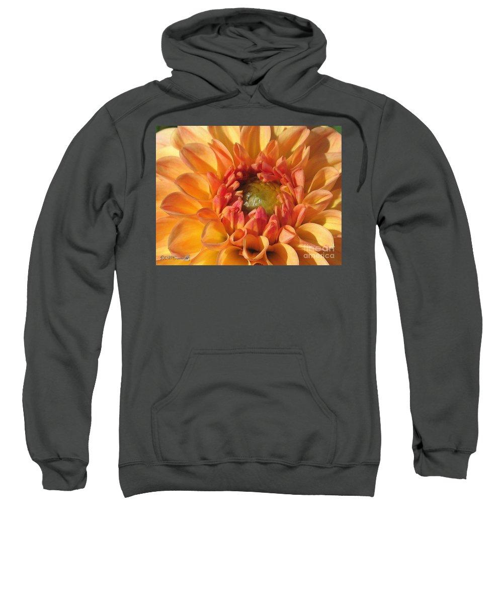 Dahlia Sweatshirt featuring the painting Dahlia Named Brandon James by J McCombie