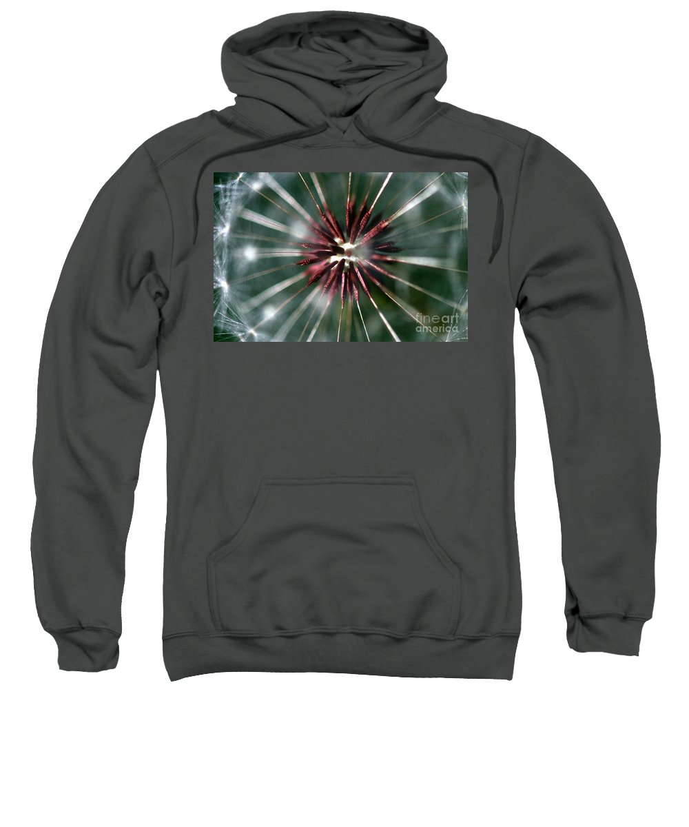 Abstract Sweatshirt featuring the photograph Dandelion Seed Head by Henrik Lehnerer