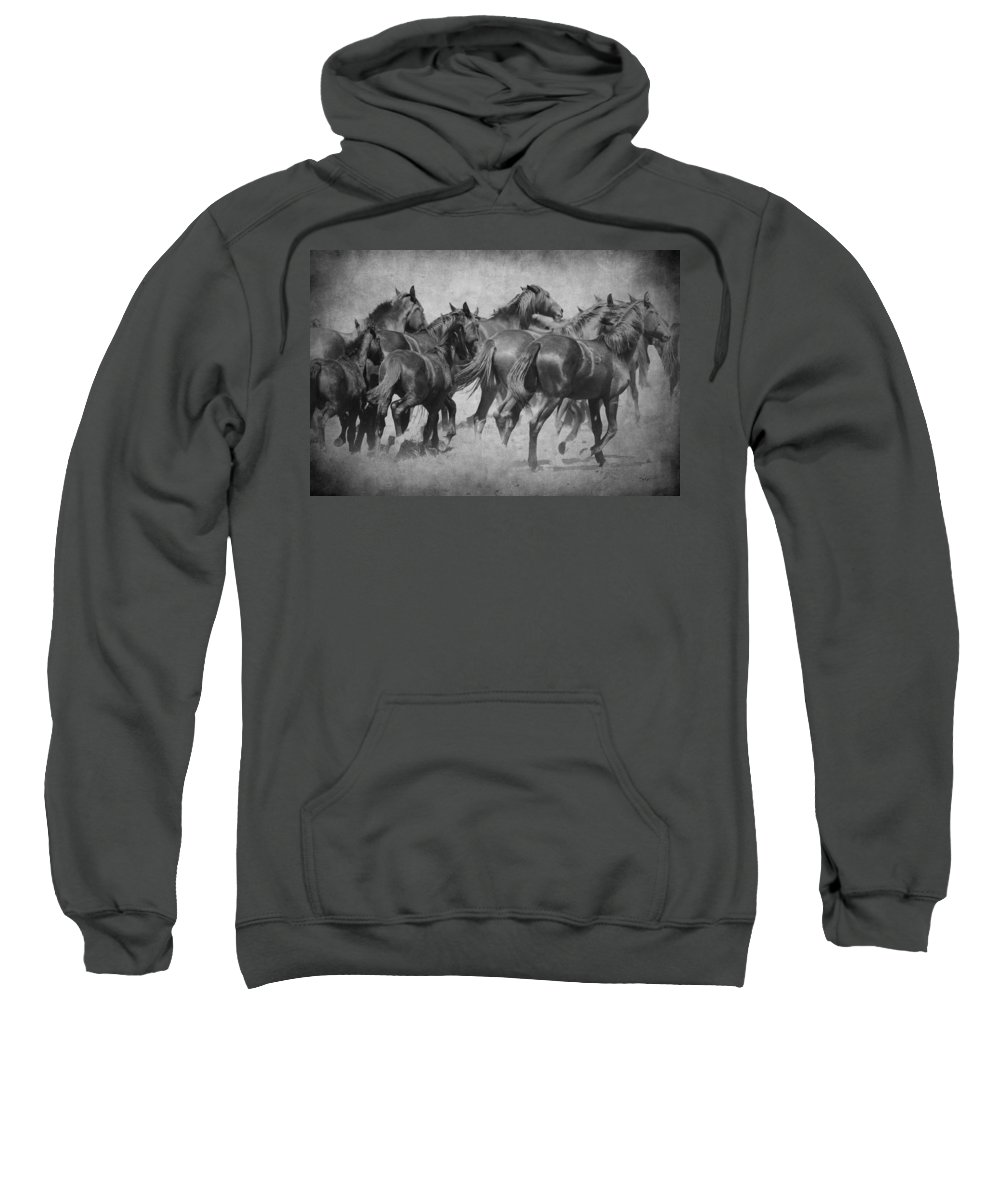 Wild Horses Sweatshirt featuring the photograph On The Run by Steve McKinzie