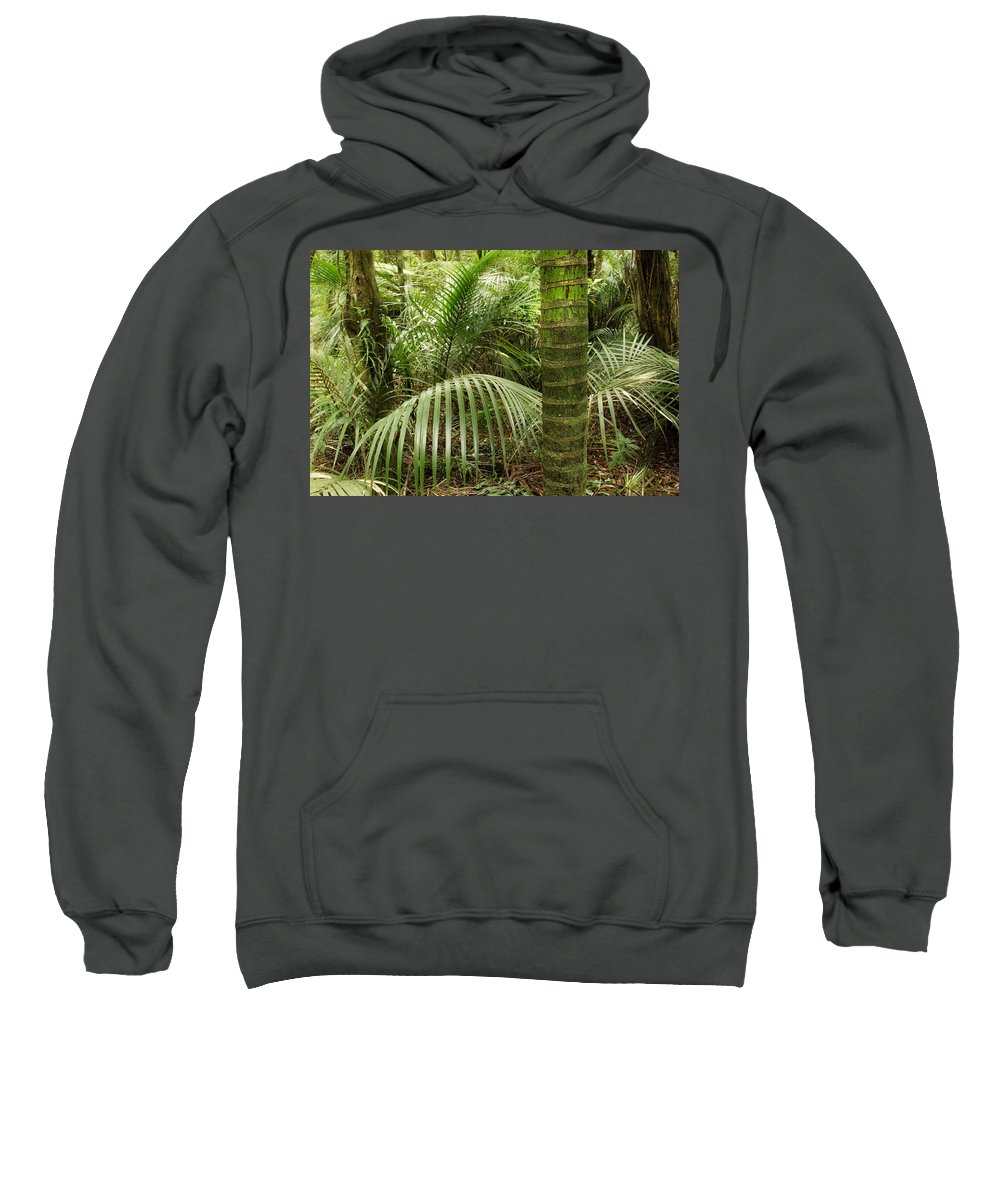 Forest Sweatshirt featuring the photograph Jungle by Les Cunliffe