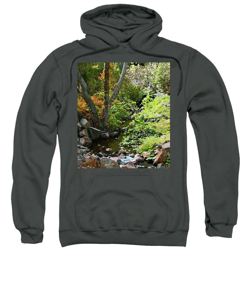 A Quiet Place Sweatshirt featuring the painting A Quiet Place by Ellen Henneke