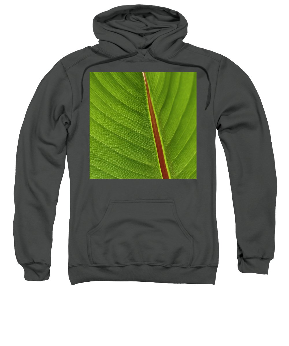 Leaf Sweatshirt featuring the photograph Banana Leaf by Heiko Koehrer-Wagner