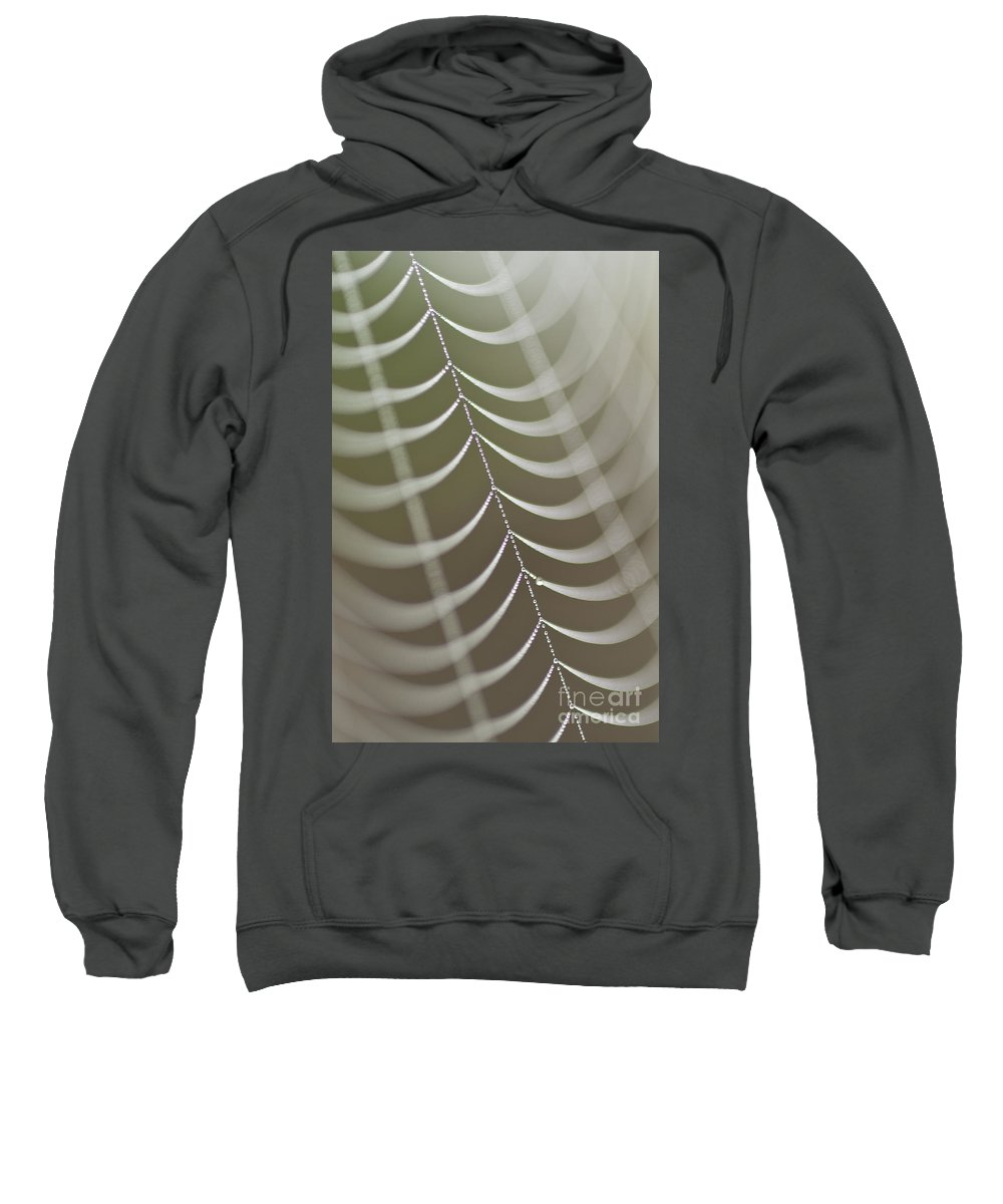 Aranae Sweatshirt featuring the photograph Spider Web With Dew Drops by Jim Corwin