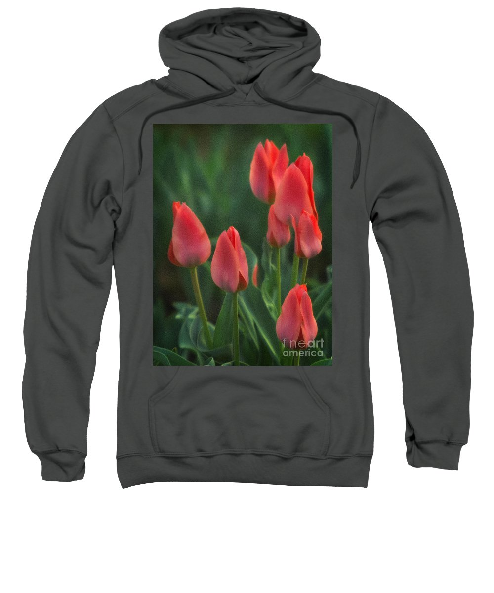 Red Tulips Sweatshirt featuring the photograph 7reds by Robert Marleau