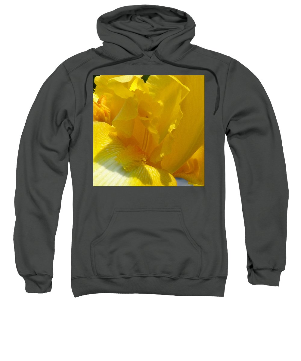 Iris Sweatshirt featuring the photograph Yellow Iris 2 by David Hohmann