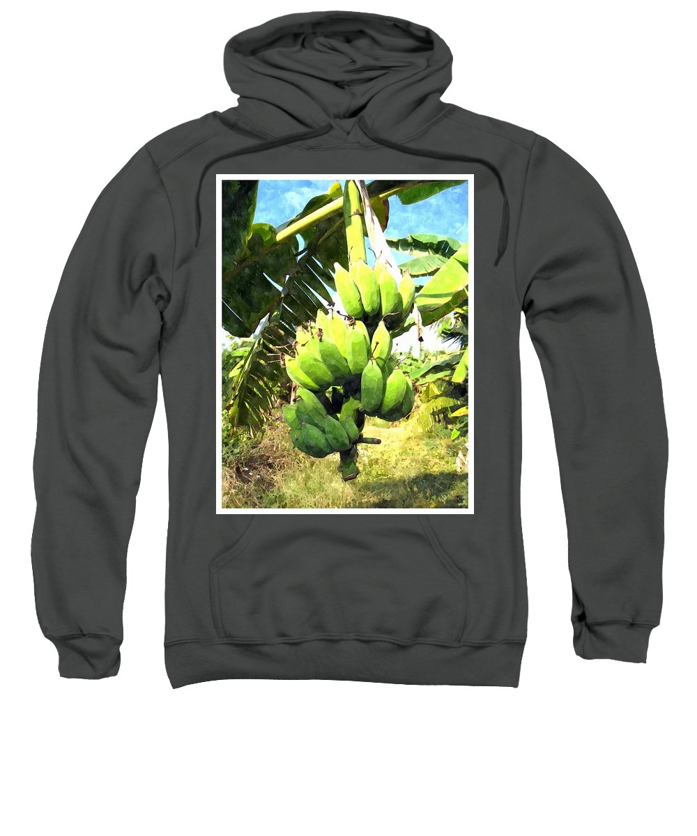 Banana Sweatshirt featuring the painting A Banana Field In Late Afternoon Sunlight With Sky And Clouds by Jeelan Clark