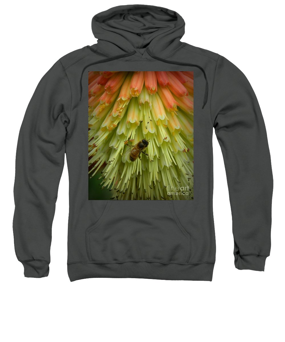 A Bee's Work Is Never Done Sweatshirt featuring the photograph A Bee's Work Is Never Done by Chalet Roome-Rigdon