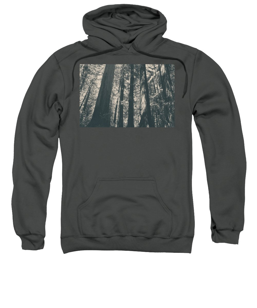 Humboldt Redwoods State Park Sweatshirt featuring the photograph A Breath Of Fresh Air by Laurie Search