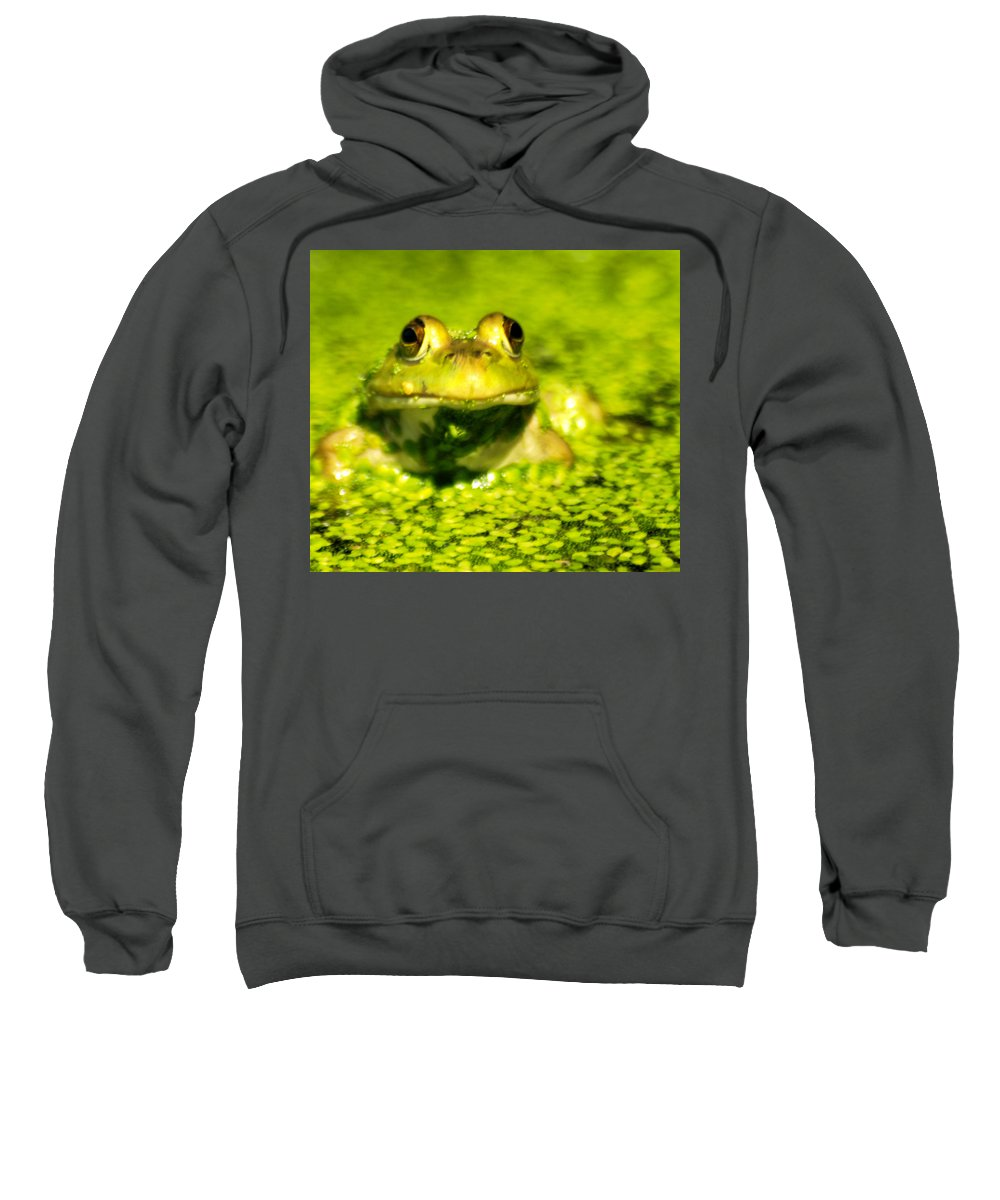 Green Algae Sweatshirt featuring the photograph A Frogs Day by Optical Playground By MP Ray