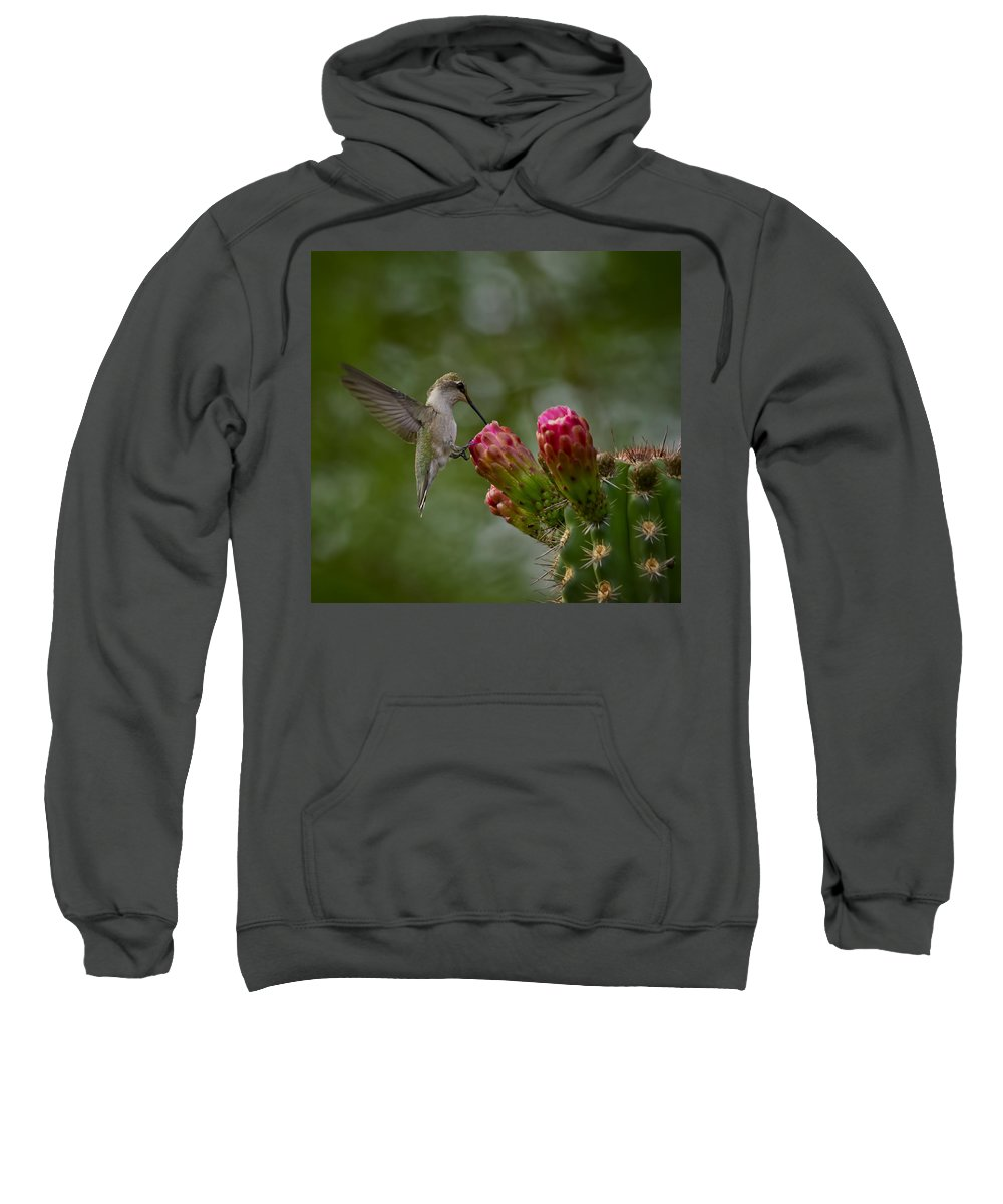 Hummingbird Sweatshirt featuring the photograph A Happy Little Hummer by Saija Lehtonen