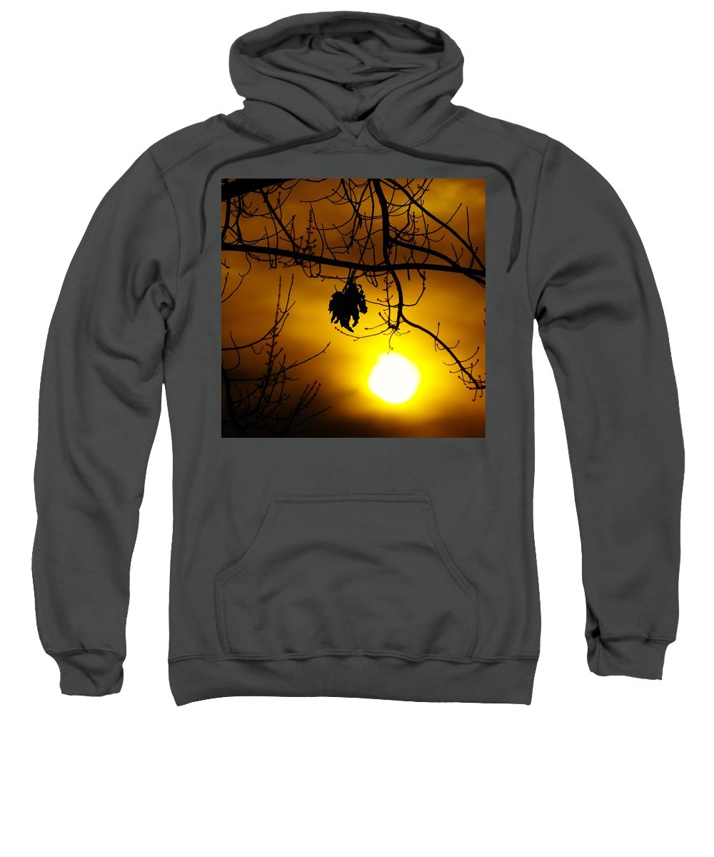 Leaves Sweatshirt featuring the photograph A Leaf Hanging On by Jeff Swan