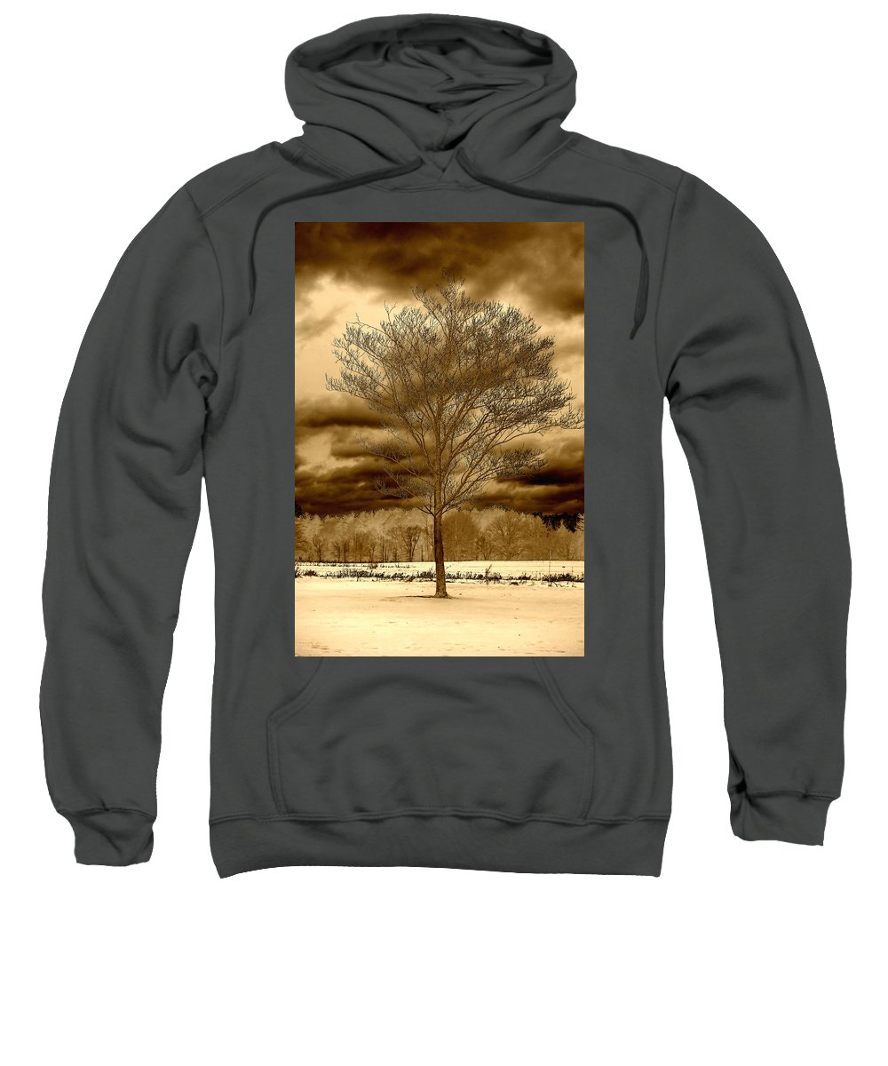 Tree Sweatshirt featuring the photograph A Tree At Appleton by David Stone