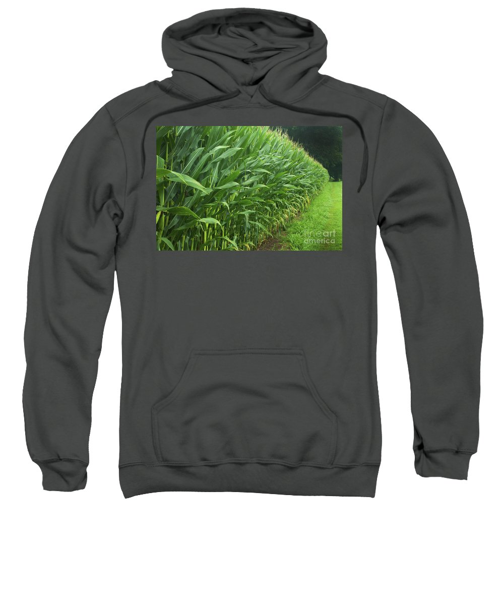 Corn Sweatshirt featuring the photograph A Wall Of Corn by Paul W Faust - Impressions of Light