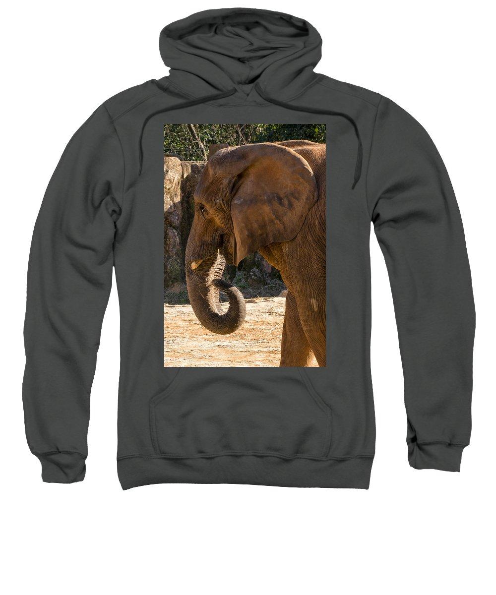 African Elephant Sweatshirt featuring the digital art African Elephant Profile by Chris Flees