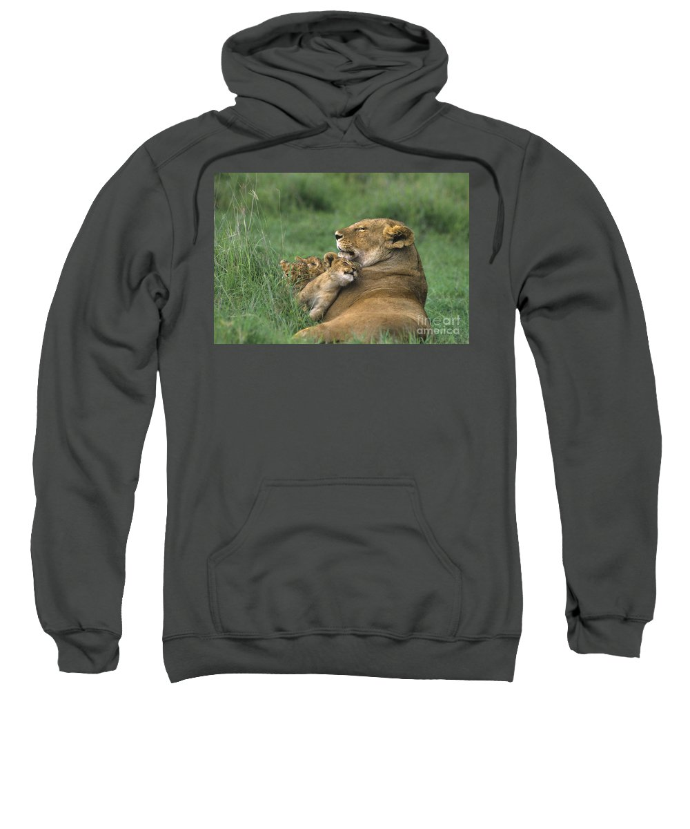 Africa Sweatshirt featuring the photograph African Lions Mother And Cubs Tanzania by Dave Welling