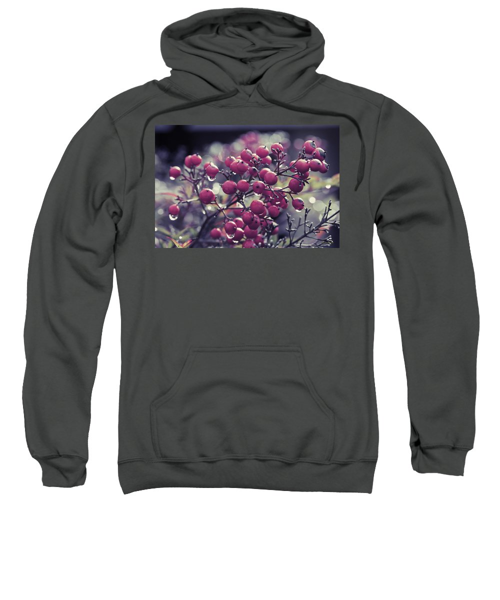 Berries Sweatshirt featuring the photograph After The Rain by Angela Stanton