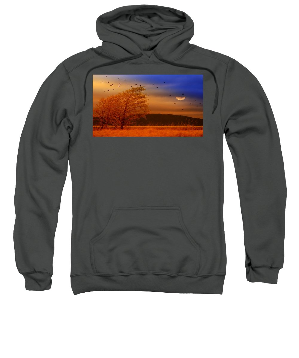 Landscape Sweatshirt featuring the photograph Against The Wind by Holly Kempe