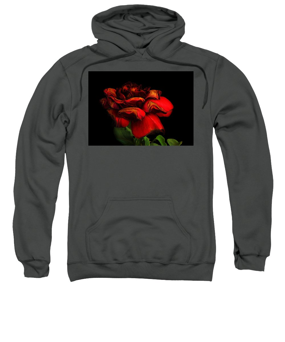 Rose Sweatshirt featuring the photograph Ageing Beauty by Robert Woodward