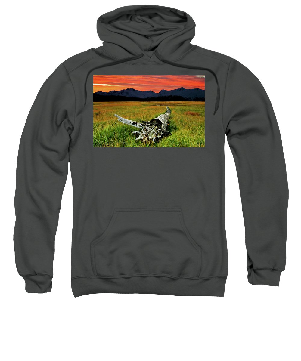 An Old Tree Sweatshirt featuring the photograph Aging Beautifully by Ron Day