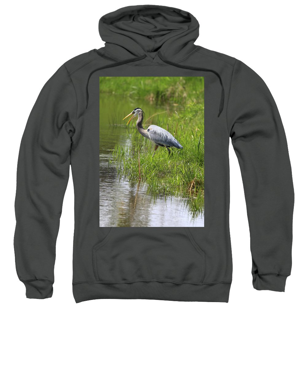 Bird Sweatshirt featuring the photograph Ah That Tastes Good by Deborah Benoit