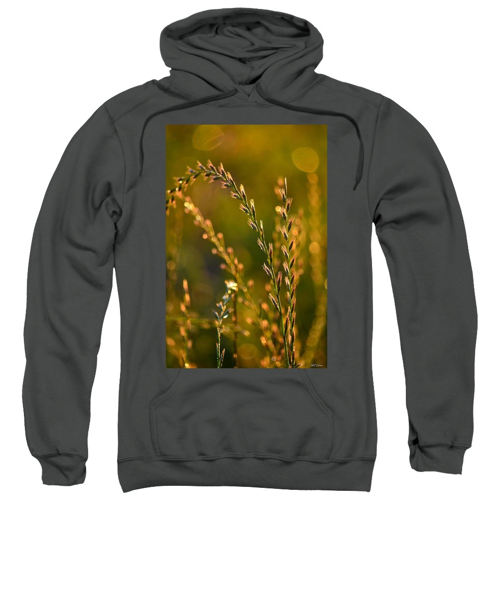 All That Glitters Is Gold Sweatshirt featuring the photograph All That Glitters Is Gold by Maria Urso