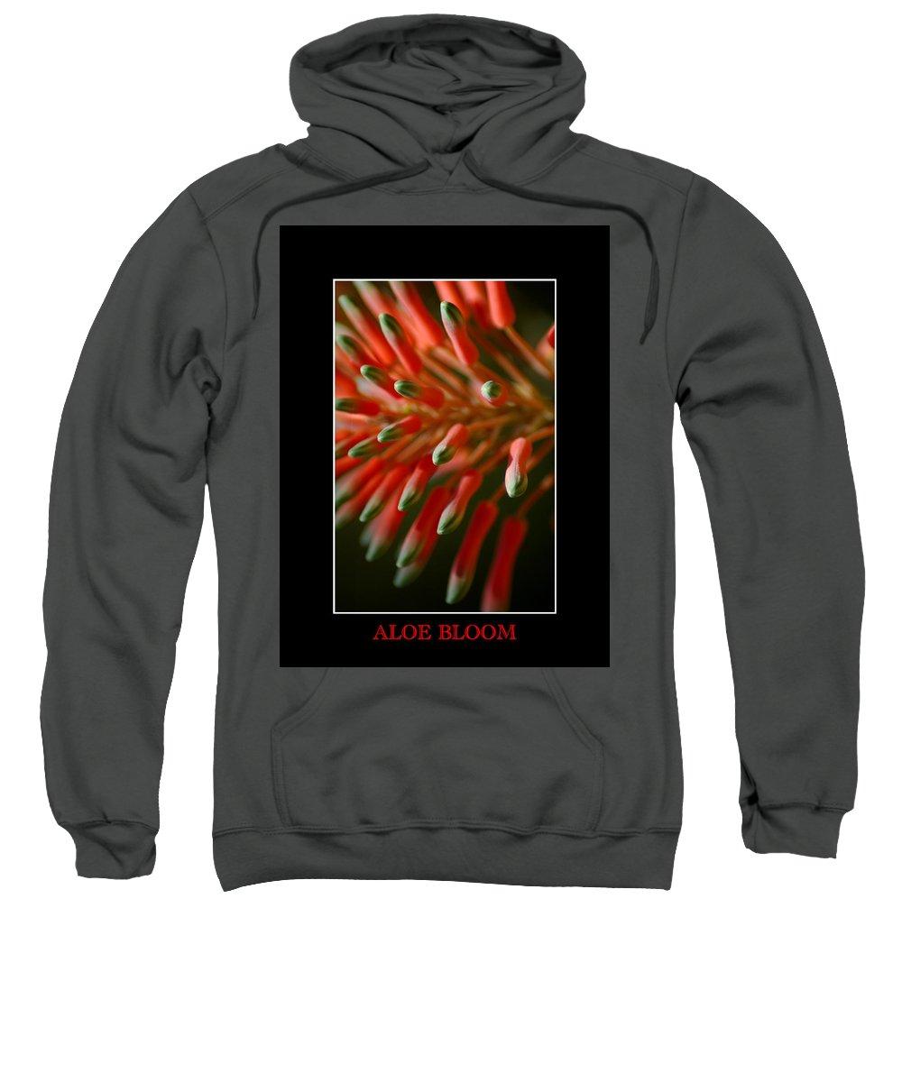 Aloe Sweatshirt featuring the photograph Aloe Bloom Window 3 by David Weeks