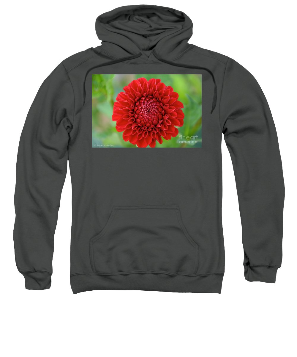 Flower Sweatshirt featuring the photograph Amazingly Perfect by Susan Herber