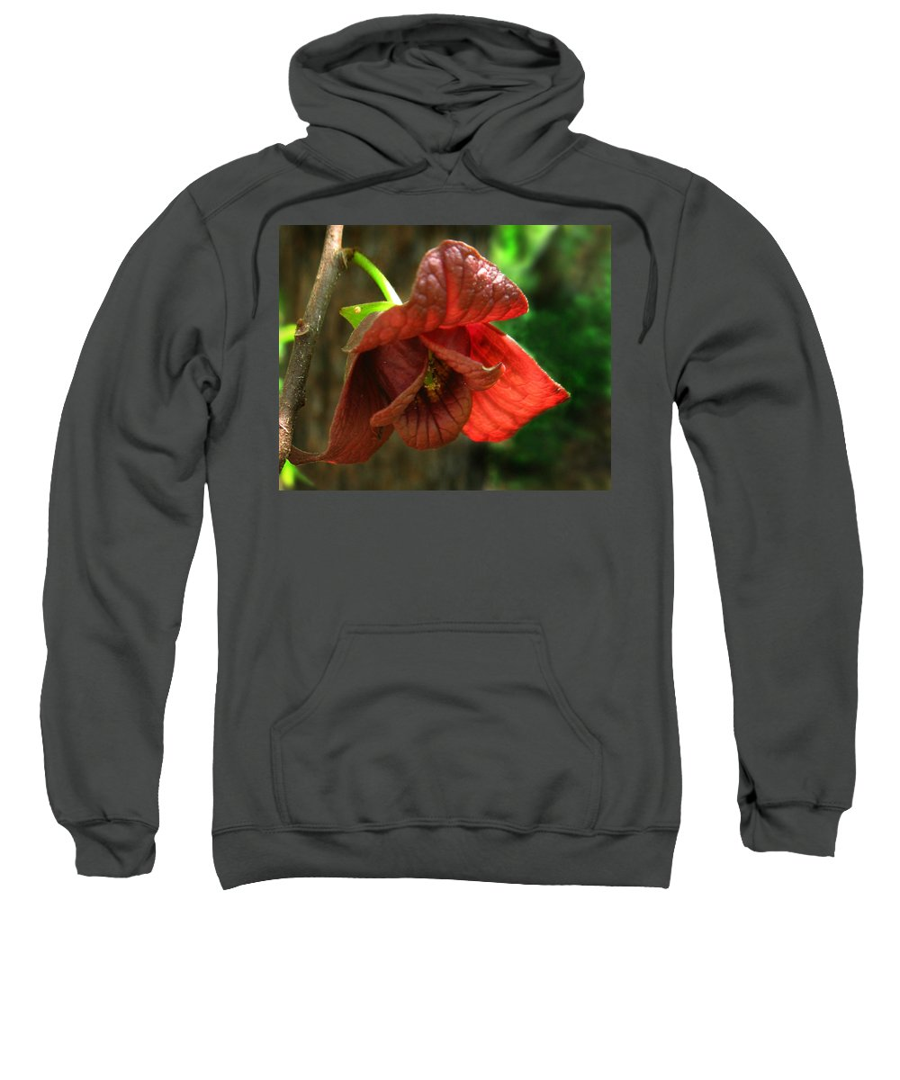 American Pawpaw Sweatshirt featuring the photograph American Pawpaw by William Tanneberger
