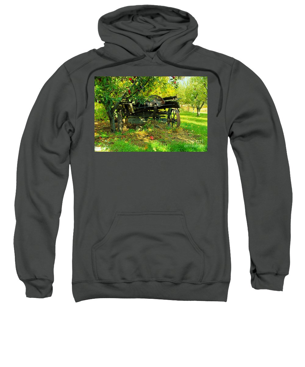 Rural Things Sweatshirt featuring the photograph An Old Harvest Wagon by Jeff Swan