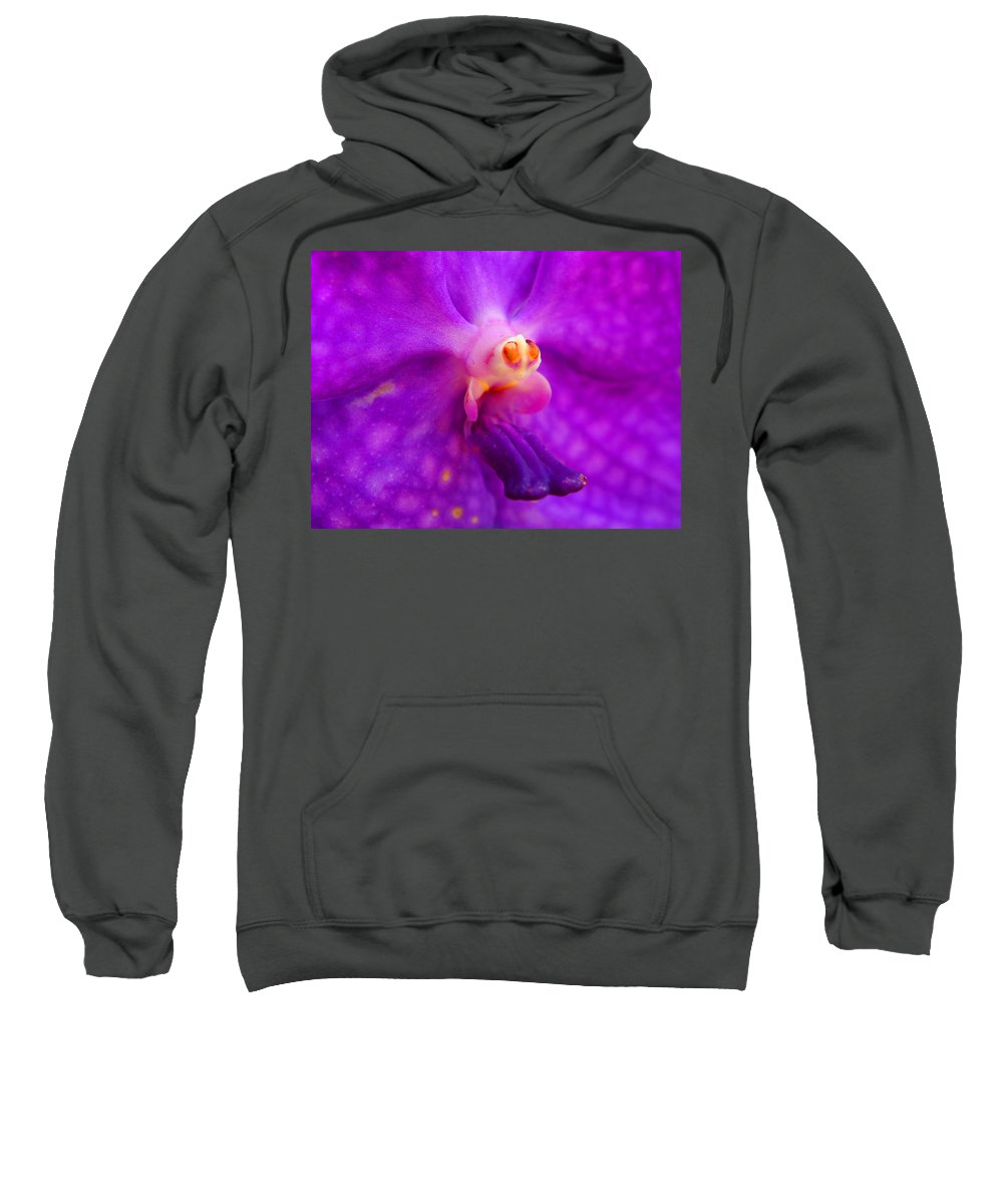 Orchid Sweatshirt featuring the photograph An Orchid's Delicates by Kaleidoscopik Photography