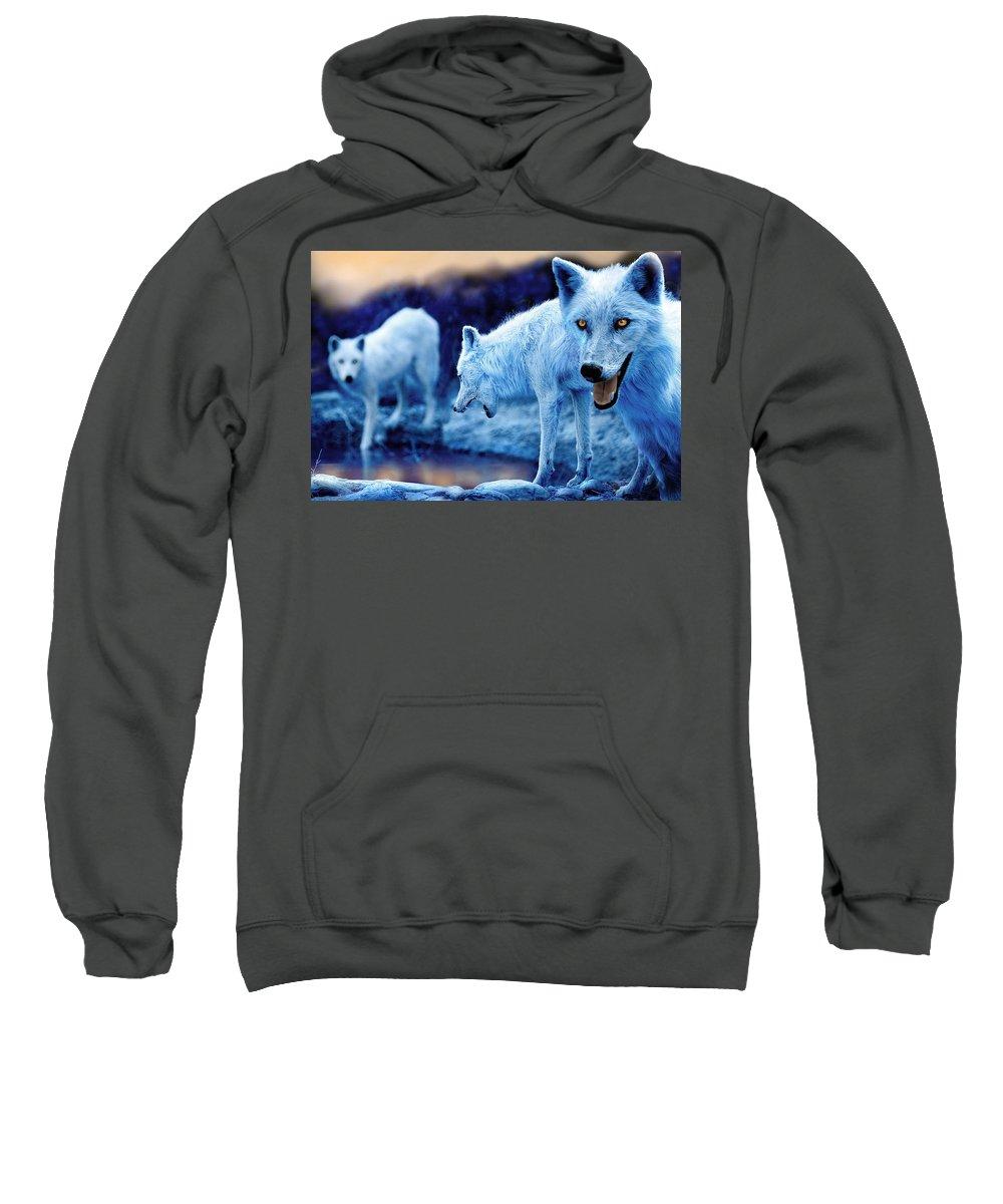 Arctic Wolf Photographs Hooded Sweatshirts T-Shirts