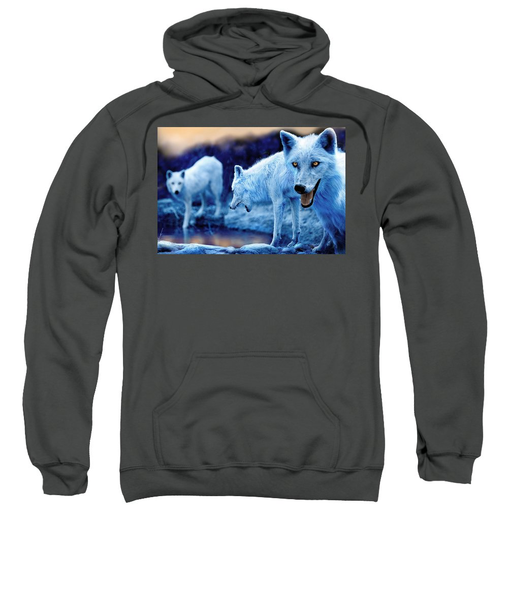 Wolf Sweatshirt featuring the photograph Arctic White Wolves by Mal Bray