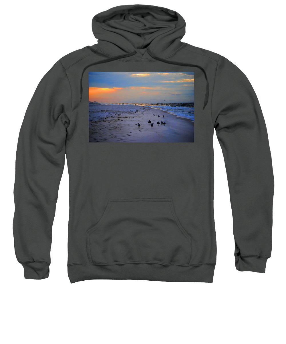 Palm Sweatshirt featuring the digital art August Beach Morning With The Sea Gulls by Michael Thomas
