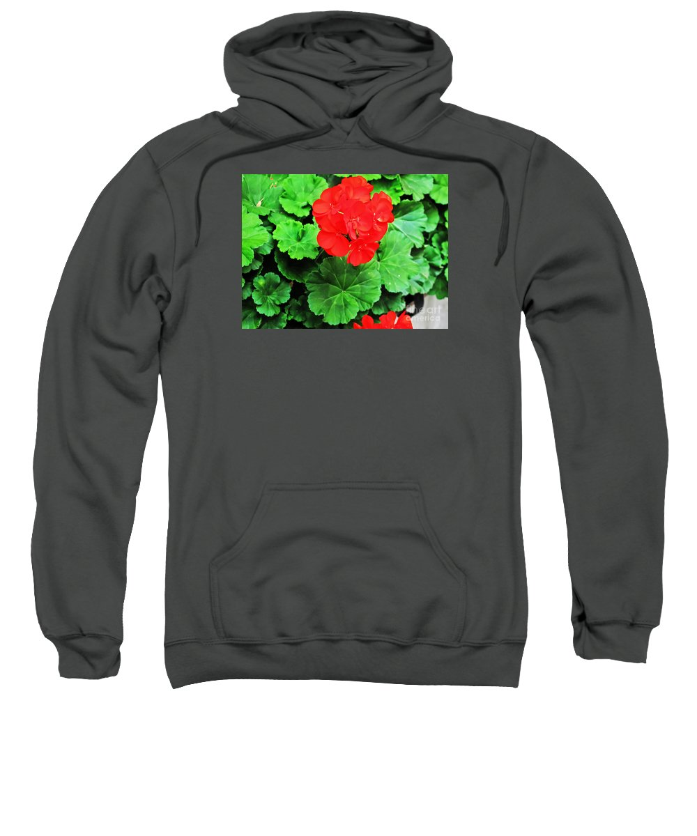 Flower Sweatshirt featuring the photograph Austrian Red by Elvis Vaughn