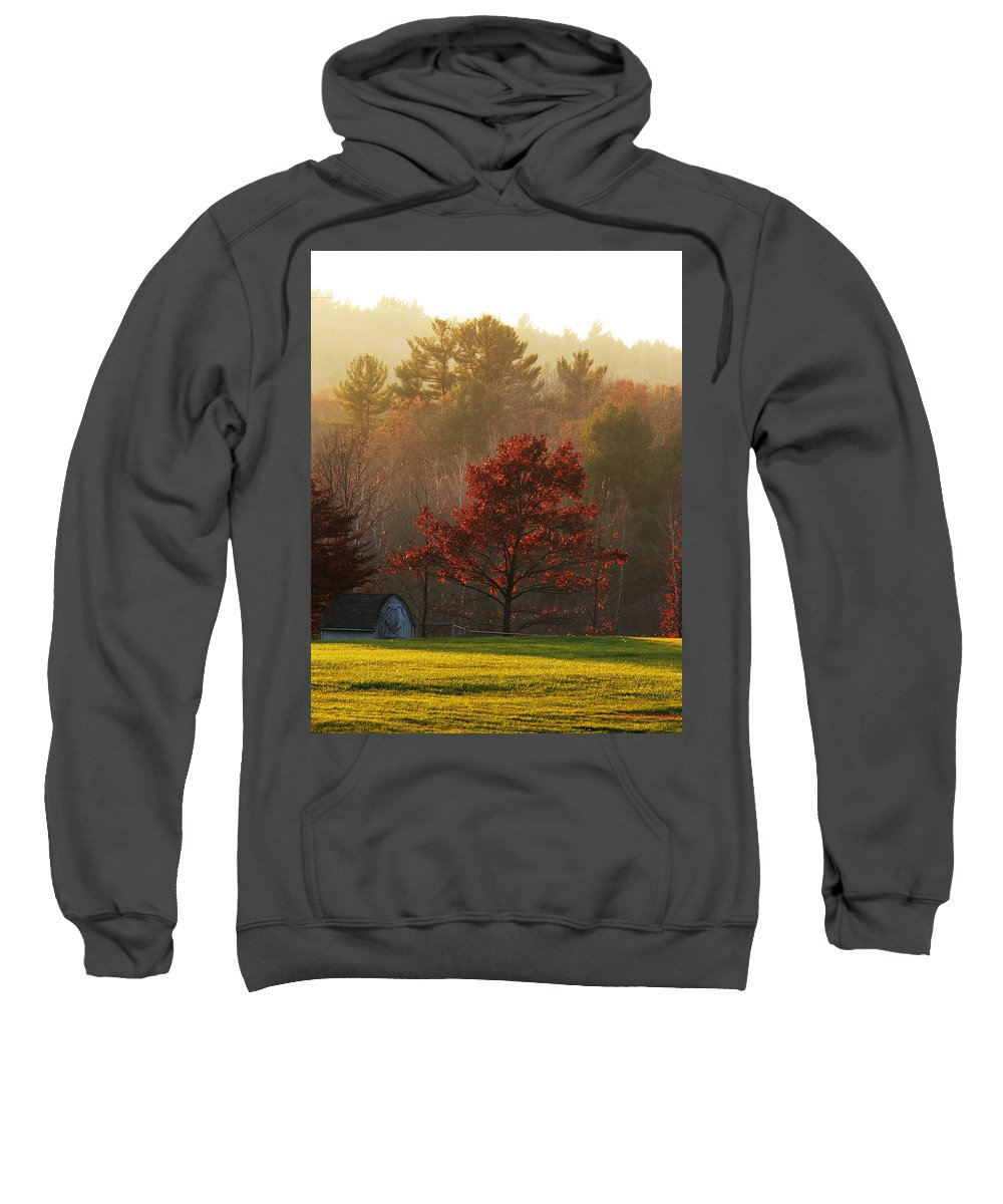 Autumn Foliage Sweatshirt featuring the photograph Autumn Ambers And Umbers by Natalie LaRocque