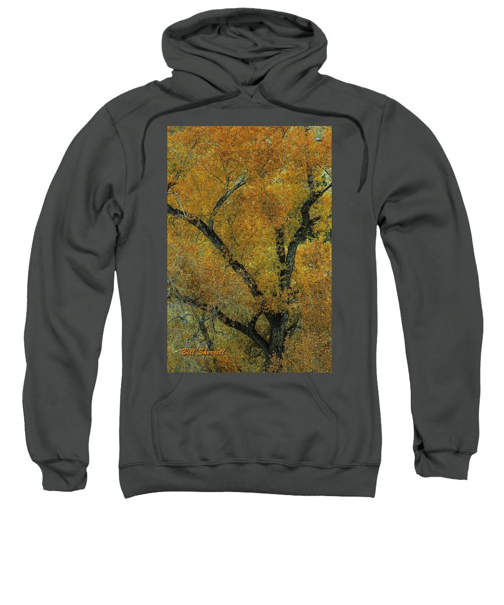 Landscape Sweatshirt featuring the photograph Autumn Contrast by Bill Sherrell