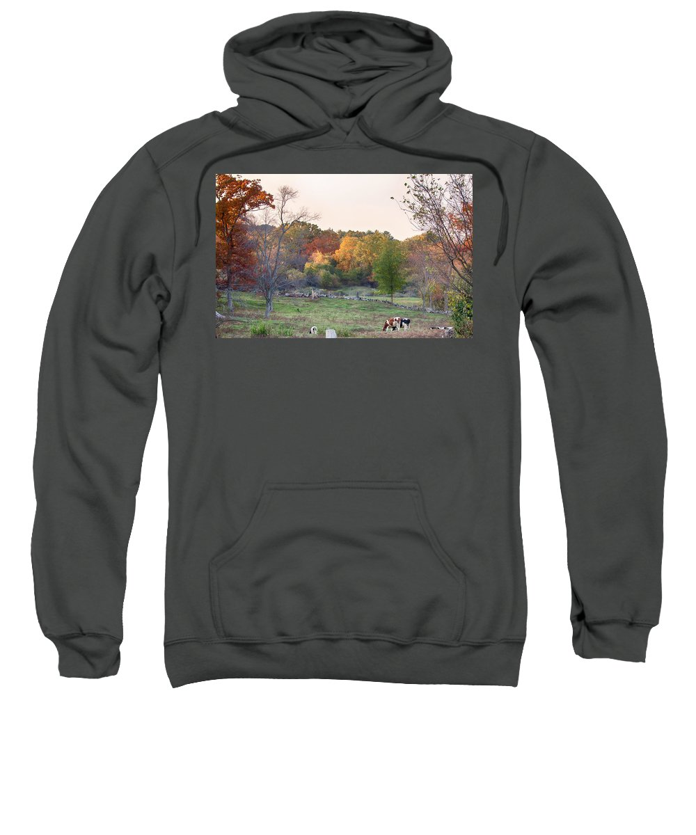 Farm Photography Sweatshirt featuring the photograph Autumn Forage Before Winter's Arrival by Jeff Folger