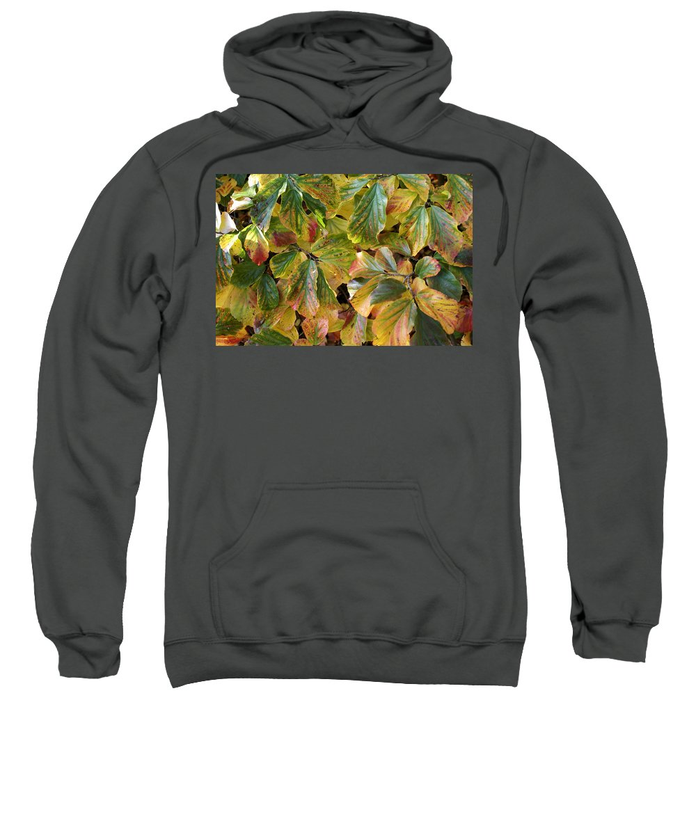 Autumn Sweatshirt featuring the photograph Autumn Leaves 79 by Ron Harpham