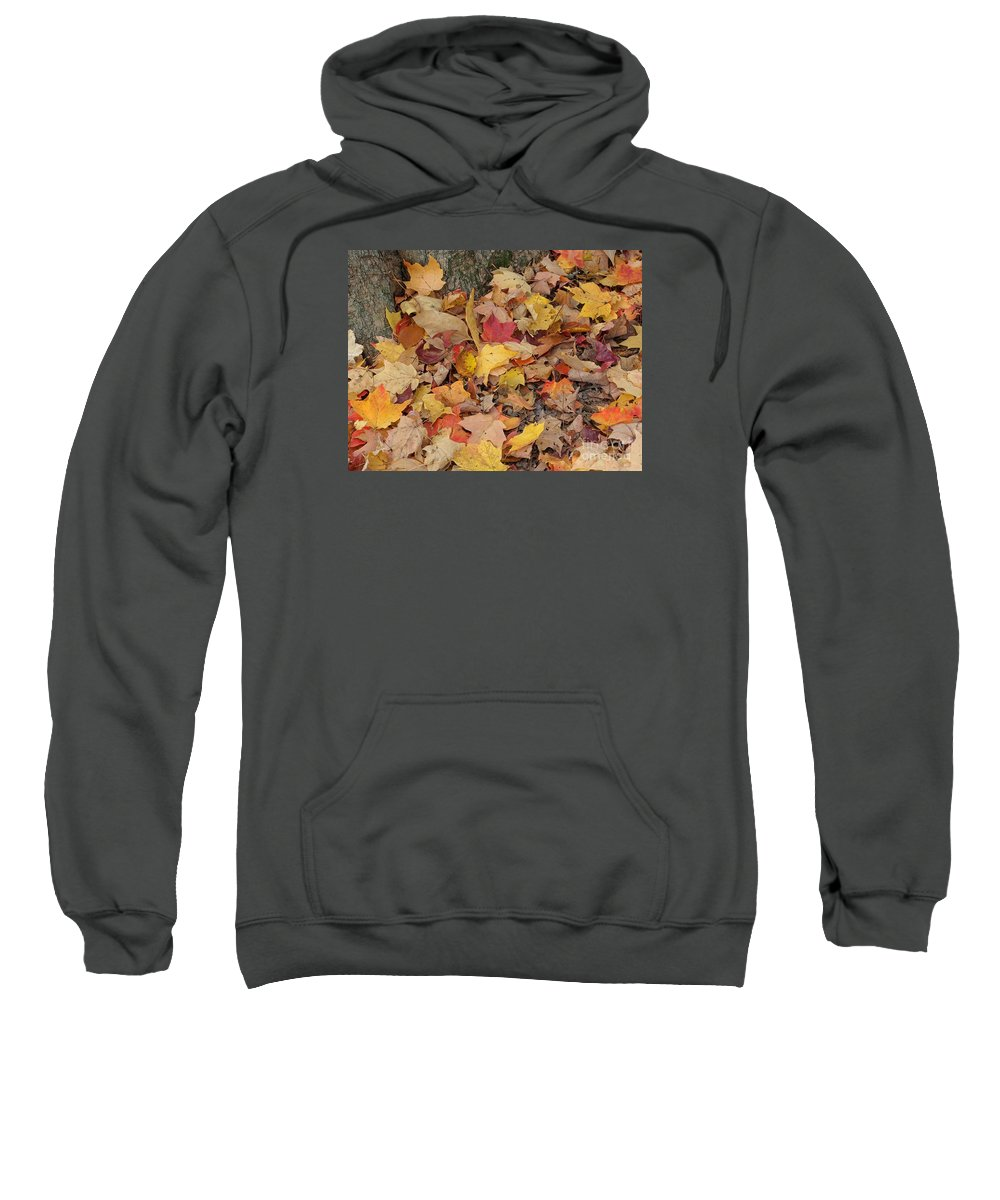 Autumn Sweatshirt featuring the photograph Autumn Leaves by Ann Horn