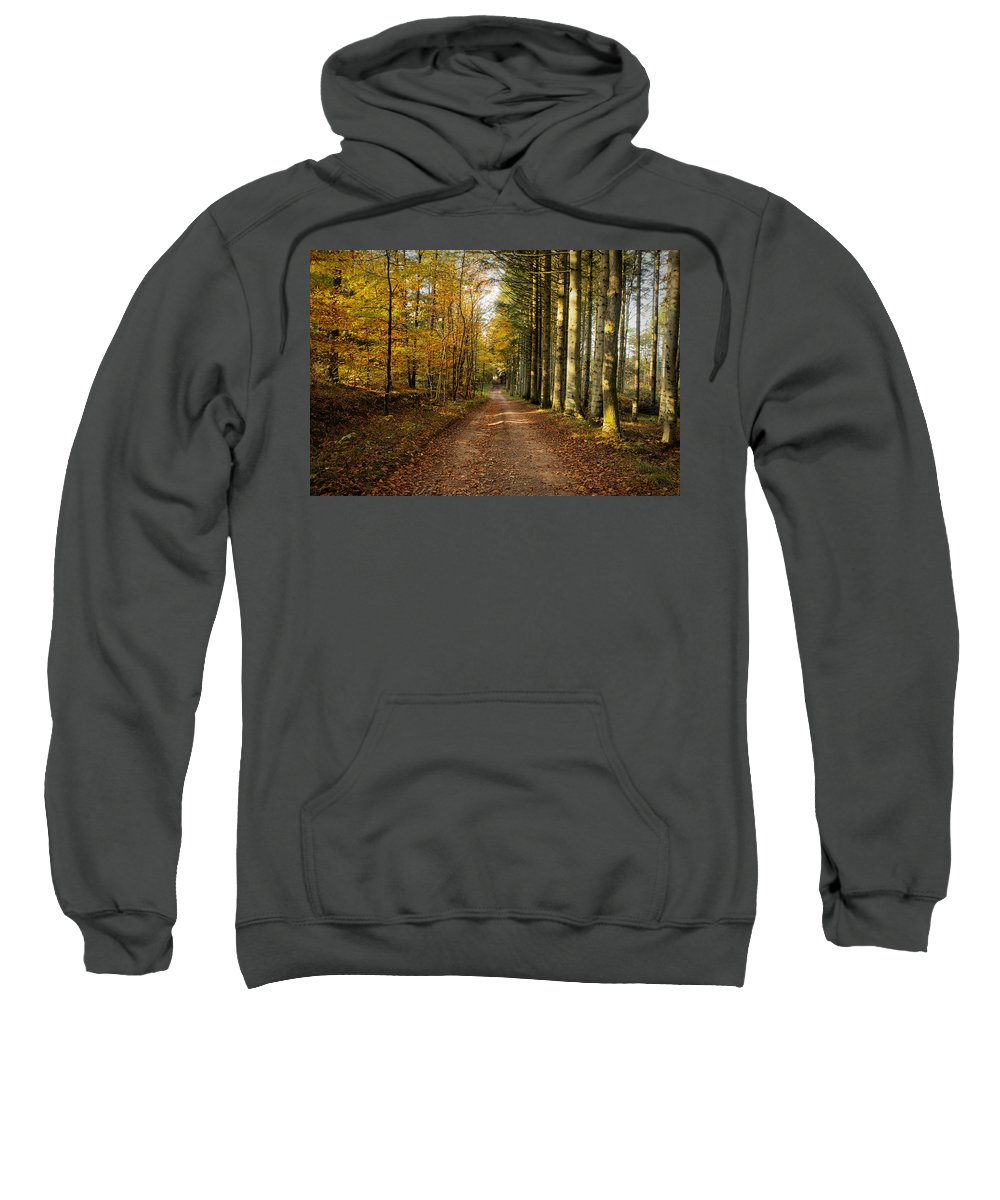 Forest Sweatshirt featuring the photograph Autumn Mood In The Forrest by Mike Santis