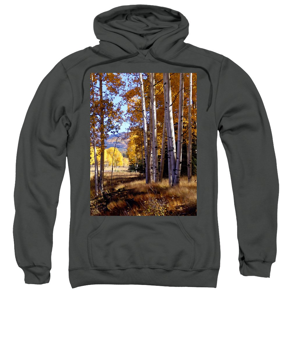 Trees Sweatshirt featuring the photograph Autumn Paint Chama New Mexico by Kurt Van Wagner