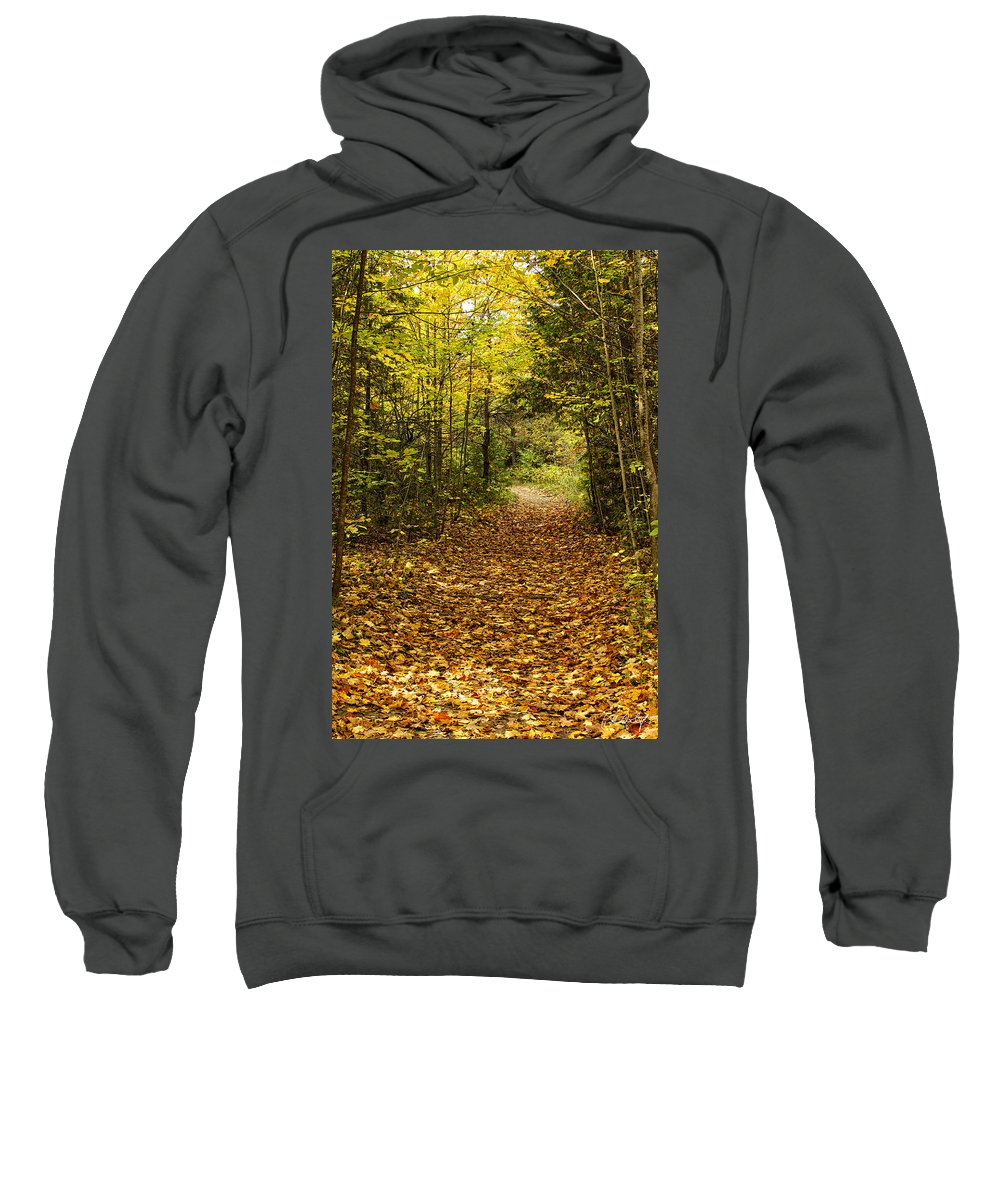 Autumn Sweatshirt featuring the photograph Autumn Walk by Phill Doherty