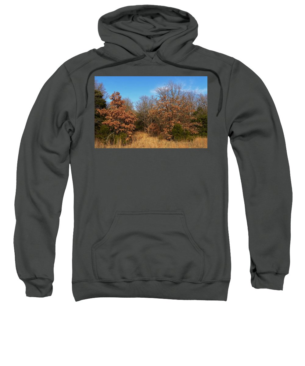 Autumn Sweatshirt featuring the photograph Autumn Woods by Annie Adkins